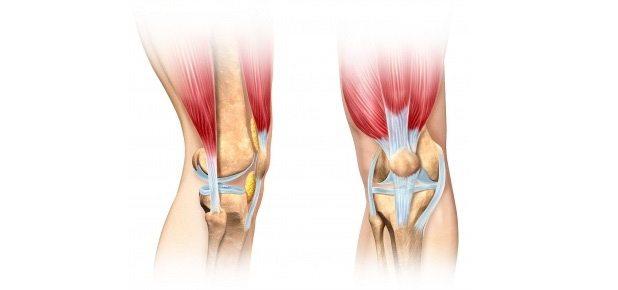 Эффективное лечение коленного сустава